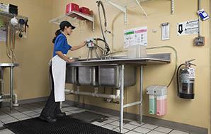 Female employee filling a Three-Compartment Sink with Signet Sanitizer from a dispenser